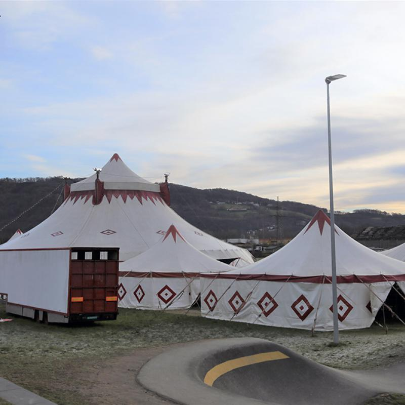 Circus Louis Knie Junior in Linz 2021