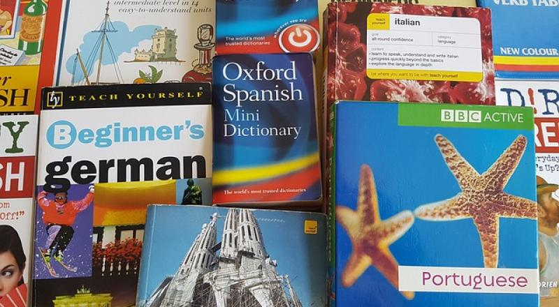 verschiedene Sprachbücher (Portugiesisch, Deutsch, Spanisch, etc.)